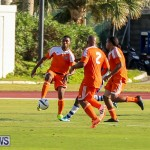 Devonshire Colts vs Young Men Social Club Bermuda, January 1 2015-10