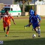 Devonshire Colts vs Young Men Social Club Bermuda, January 1 2015-16