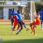 Devonshire Colts vs Young Men Social Club Bermuda, January 1 2015-2