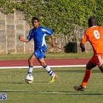 Devonshire Colts vs Young Men Social Club Bermuda, January 1 2015-23