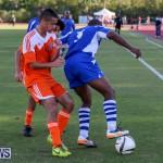 Devonshire Colts vs Young Men Social Club Bermuda, January 1 2015-7