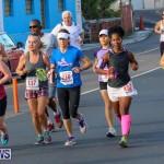 Fairmont to Fairmont Race Race Bermuda, January 11 2015-127