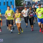 Fairmont to Fairmont Race Race Bermuda, January 11 2015-145