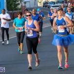 Fairmont to Fairmont Race Race Bermuda, January 11 2015-149
