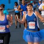 Fairmont to Fairmont Race Race Bermuda, January 11 2015-153