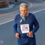 Fairmont to Fairmont Race Race Bermuda, January 11 2015-208