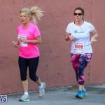 Fairmont to Fairmont Race Race Bermuda, January 11 2015-211