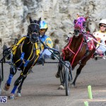 Harness Pony Racing Bermuda, January 1 2015-11