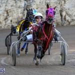 Harness Pony Racing Bermuda, January 1 2015-13