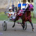 Harness Pony Racing Bermuda, January 1 2015-15