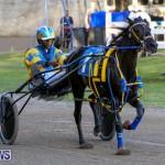 Harness Pony Racing Bermuda, January 1 2015-16
