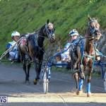 Harness Pony Racing Bermuda, January 1 2015-17