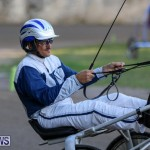 Harness Pony Racing Bermuda, January 1 2015-18