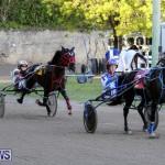 Harness Pony Racing Bermuda, January 1 2015-25