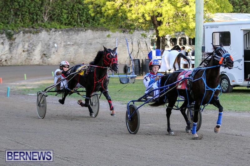Harness-Pony-Racing-Bermuda-January-1-2015-25