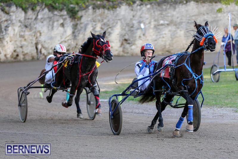 Harness-Pony-Racing-Bermuda-January-1-2015-30