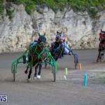 Harness Pony Racing Bermuda, January 1 2015-32