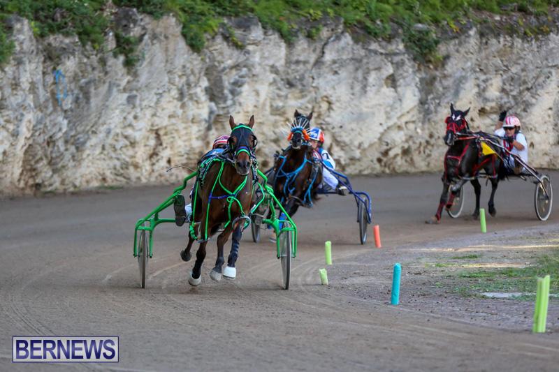Harness-Pony-Racing-Bermuda-January-1-2015-32