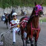 Harness Pony Racing Bermuda, January 1 2015-5