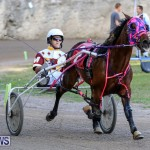 Harness Pony Racing Bermuda, January 1 2015-9
