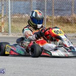 Karting Bermuda, January 18 2015-19