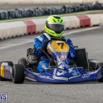 Karting Bermuda, January 18 2015-21