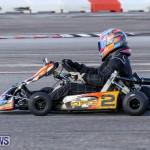 Karting Bermuda, January 4 2015-4