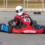 Karting Bermuda, January 4 2015-5