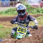 Motocross Bermuda, January 11 2015-114
