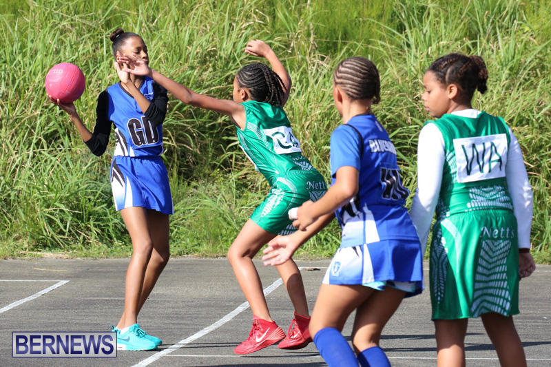 Netball-Bermuda-January-17-2015-1
