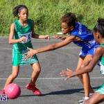 Netball Bermuda, January 17 2015-10