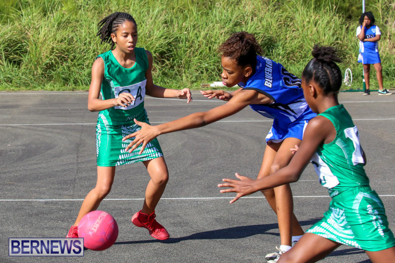 Netball-Bermuda-January-17-2015-10