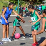 Netball Bermuda, January 17 2015-12