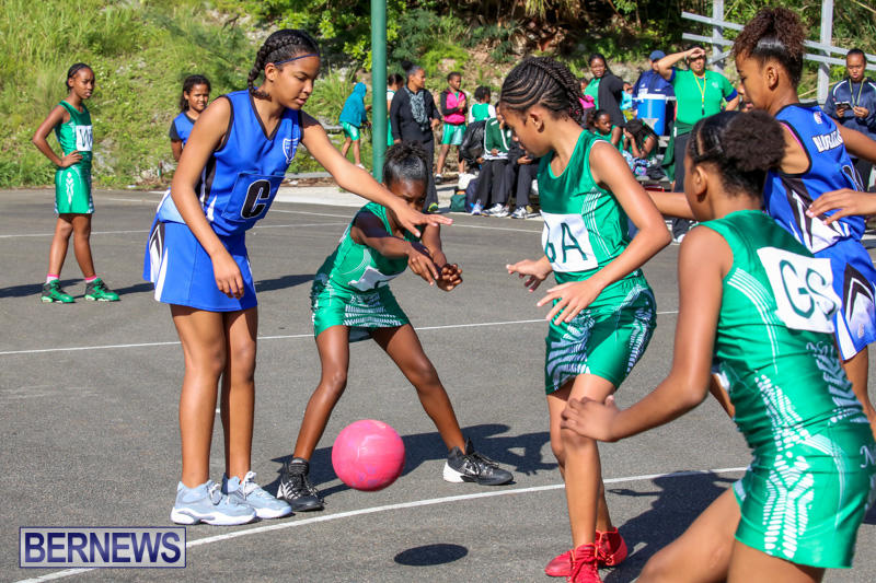Netball-Bermuda-January-17-2015-12