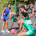 Netball Bermuda, January 17 2015-13