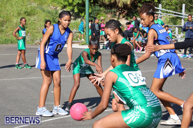 Netball-Bermuda-January-17-2015-13