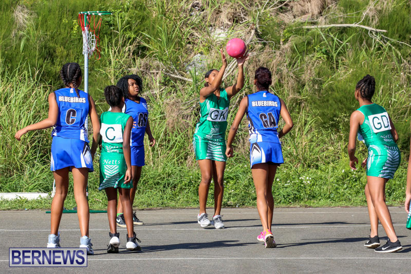 Netball-Bermuda-January-17-2015-15