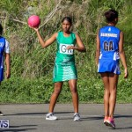 Netball Bermuda, January 17 2015-17