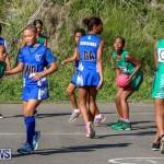 Netball Bermuda, January 17 2015-18