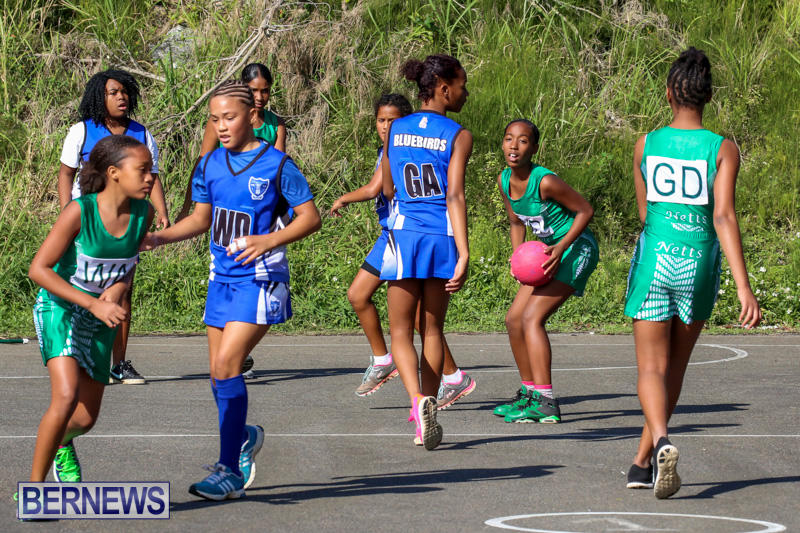 Netball-Bermuda-January-17-2015-18