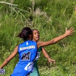 Netball Bermuda, January 17 2015-19