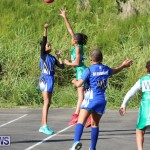Netball Bermuda, January 17 2015-2
