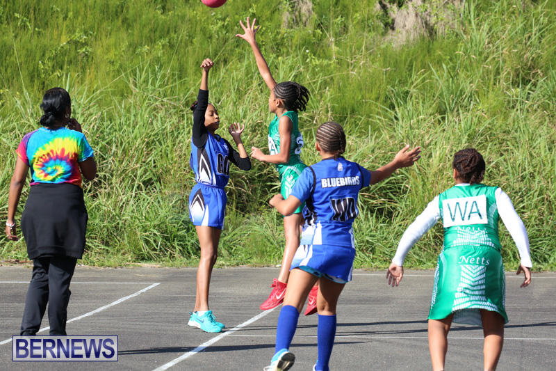 Netball-Bermuda-January-17-2015-2