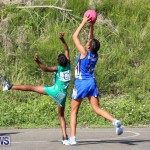 Netball Bermuda, January 17 2015-21