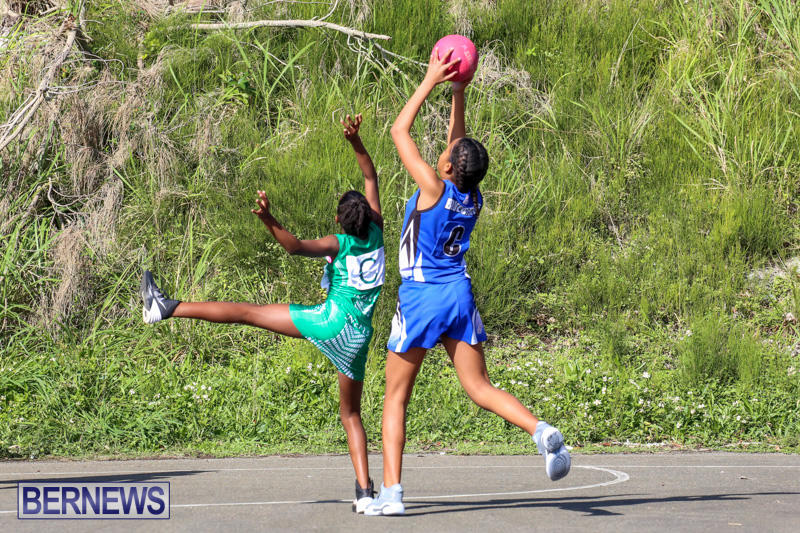 Netball-Bermuda-January-17-2015-21