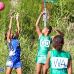 Netball Bermuda, January 17 2015-22