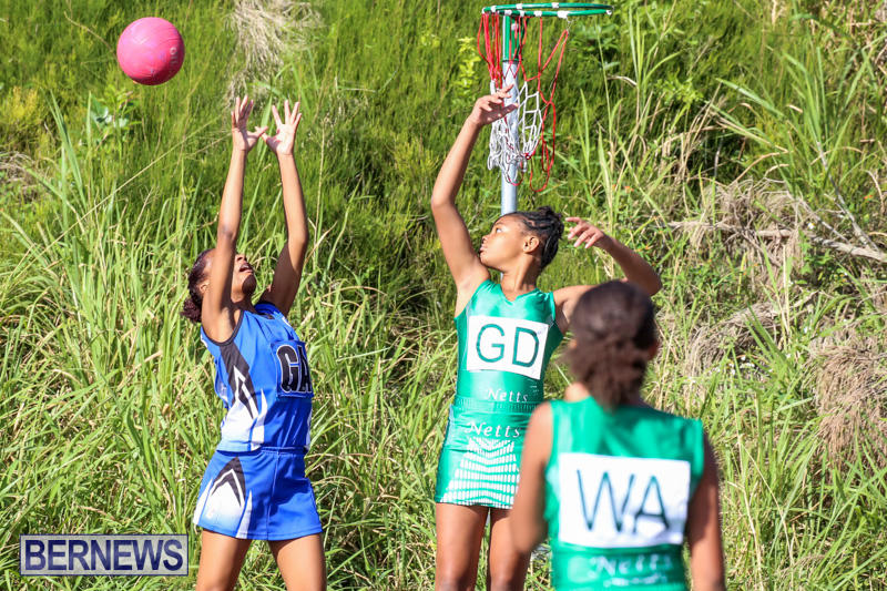 Netball-Bermuda-January-17-2015-22