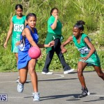 Netball Bermuda, January 17 2015-23