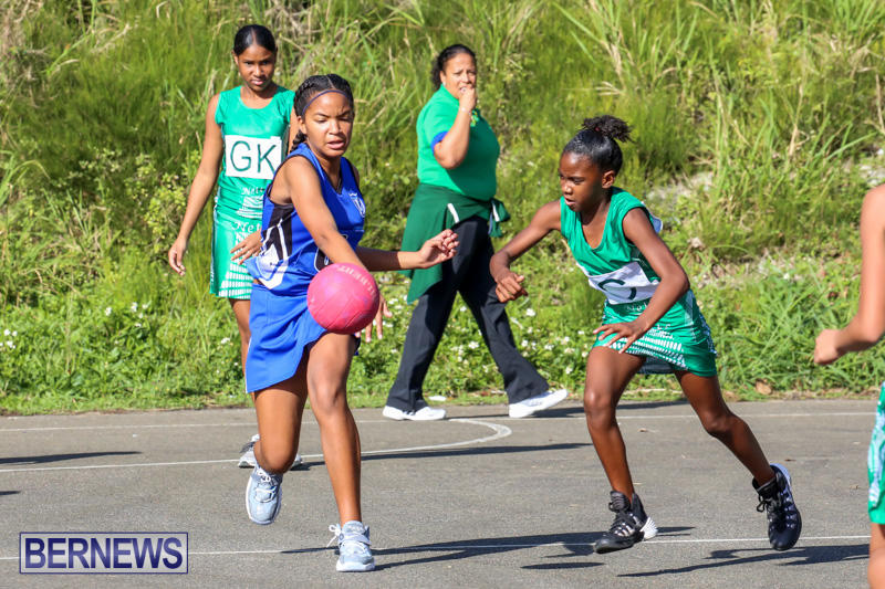 Netball-Bermuda-January-17-2015-23