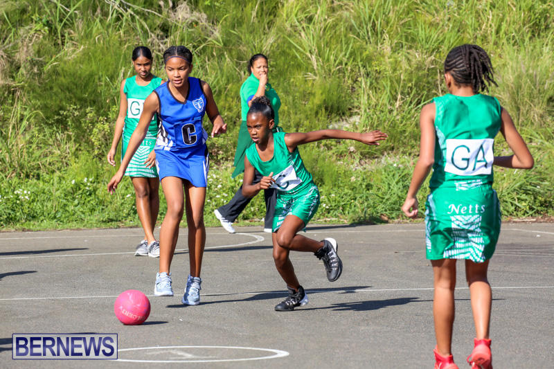 Netball-Bermuda-January-17-2015-24